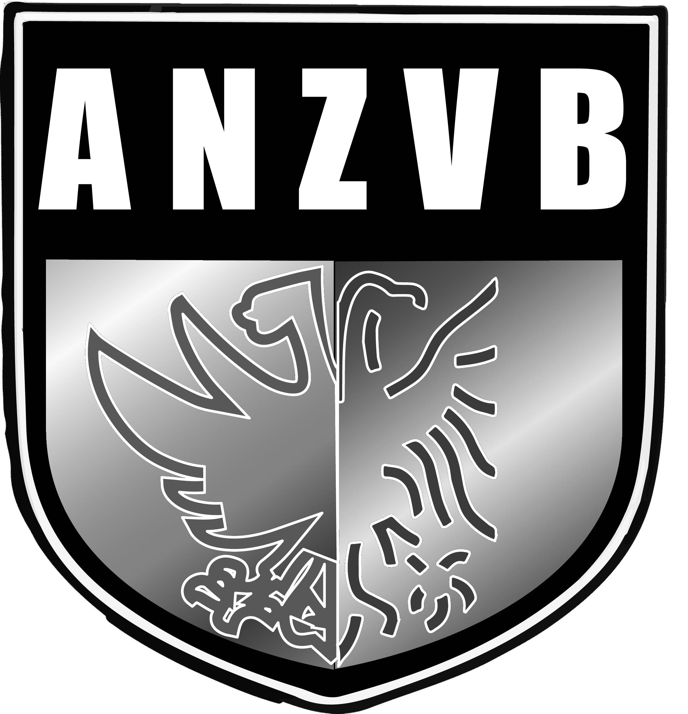 Arnhem-Nijmeegse Zaalvoetbalbond